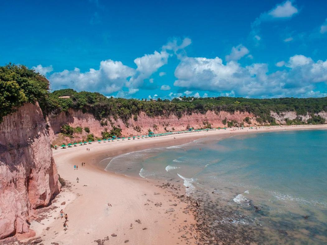 PENSE! TripAdvisor Elege Baía dos Golfinhos, Em Pipa, Entre As 10 Melhores  Praias Da América Do Sul - Pense! Numa Notícia